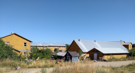 The family unit consists of three yellow, two-story houses, I live in the one peaking up in the middle and to the back.