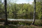 A lake on the way towards Arild.